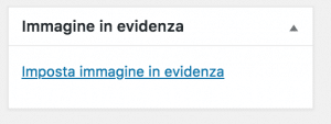 Box Immagine in Evidenza WordPress