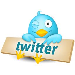 Twitter-ebook-italiano