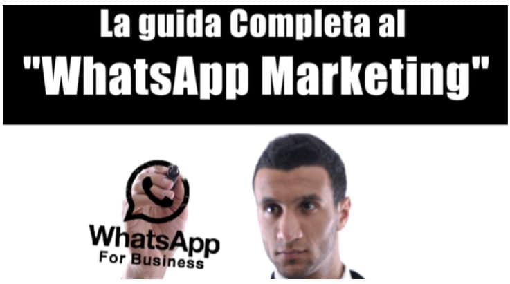 Come Guadagnare Con Whatsapp? WhatBusiness!