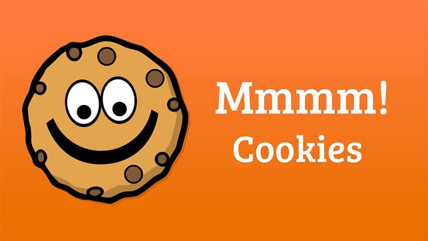 Cosa sono i Cookie: Garante della Privacy