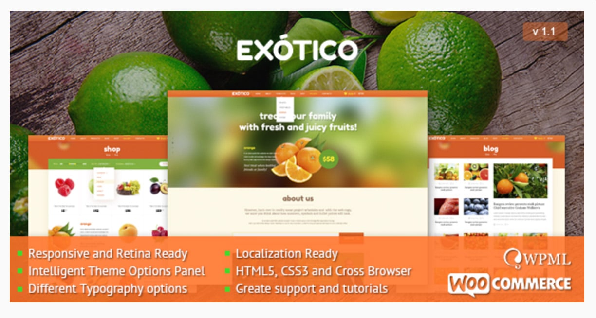 Exotico Responsive WordPress Theme