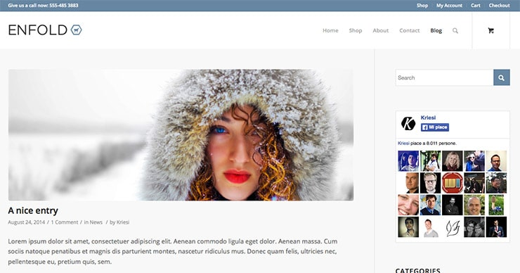 Template Wordpress Enfold: Fra i più venduti su themeforest