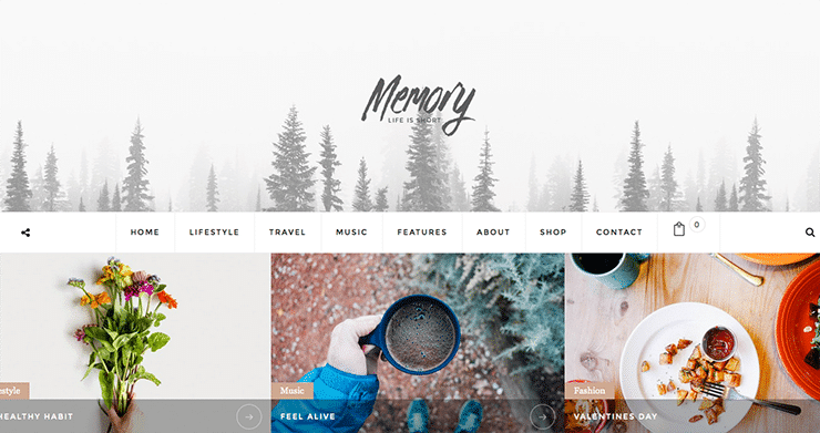 Template Wordpress Mobile Friendly Blog: Memory 2015